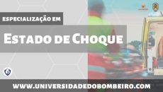 Estado de Choque - Teórico